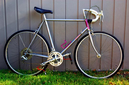 My road bike - an ancient Raleigh Technium.