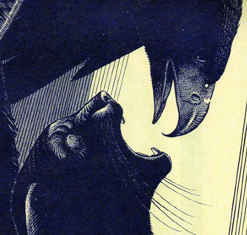 Detail from Eyes of the Cat, by Moebius and  Alejandro Jodorowsky