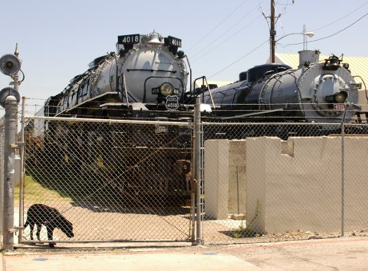 Big Boy 4018, next to a slight lesser engine, in Fair Park, a few years ago.