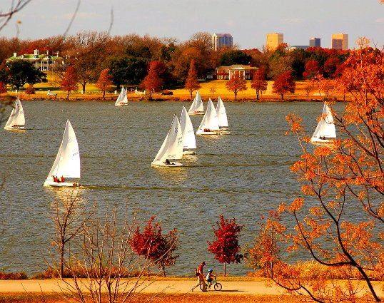 Sailboats on White Rock Lake, Dallas, TX