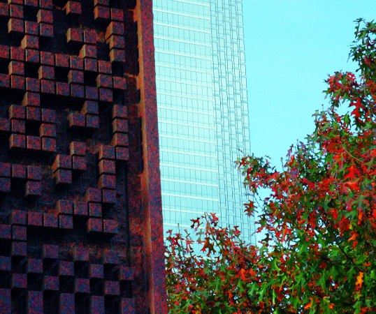 The textures of art, nature, and architecture juxtaposed in the downtown urban setting.