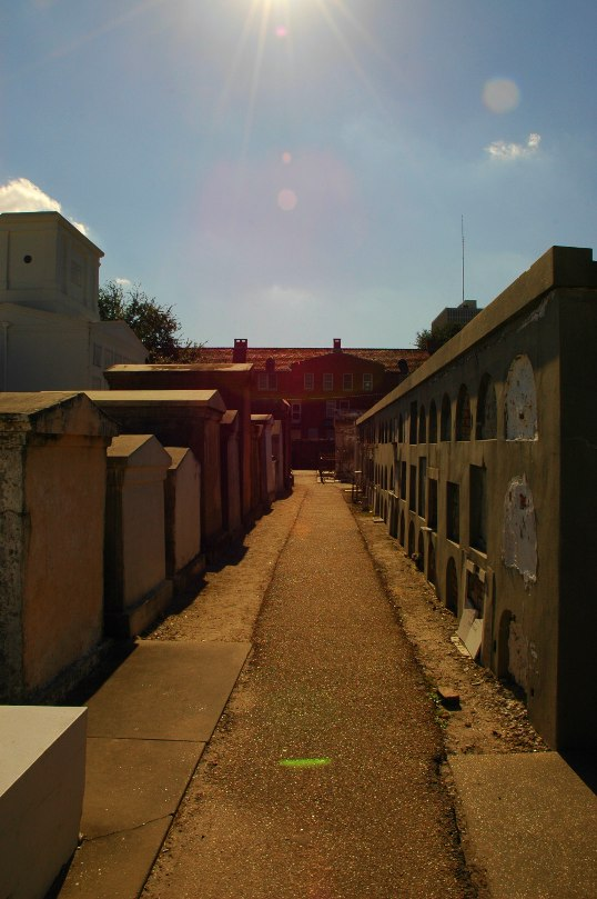 A street in the City of the Dead. Family crypts on the left, wall crypts on the right.