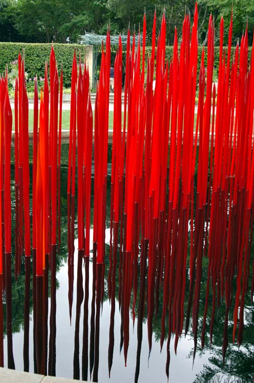 Chihuly, Red Reeds