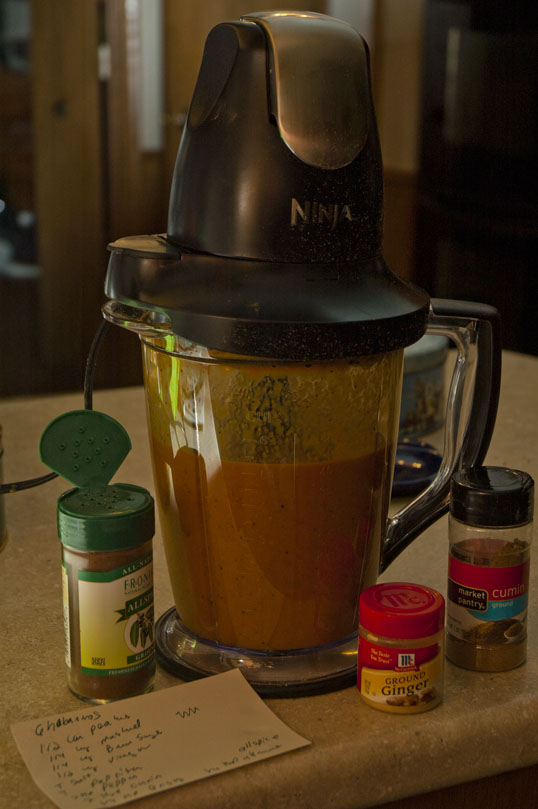 Ninja Food Processor with hot sauce and spices