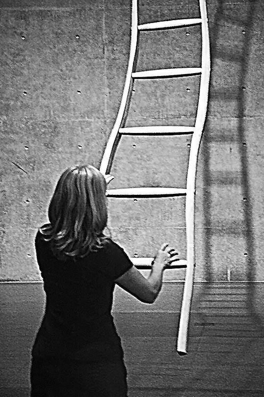 Ladder for Booker T. Washington Martin Puryear Modern Art Musuem of Fort Woth