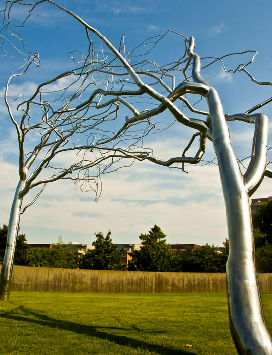 Modern Art Museum of Fort Worth Conjoined, Roxy Paine