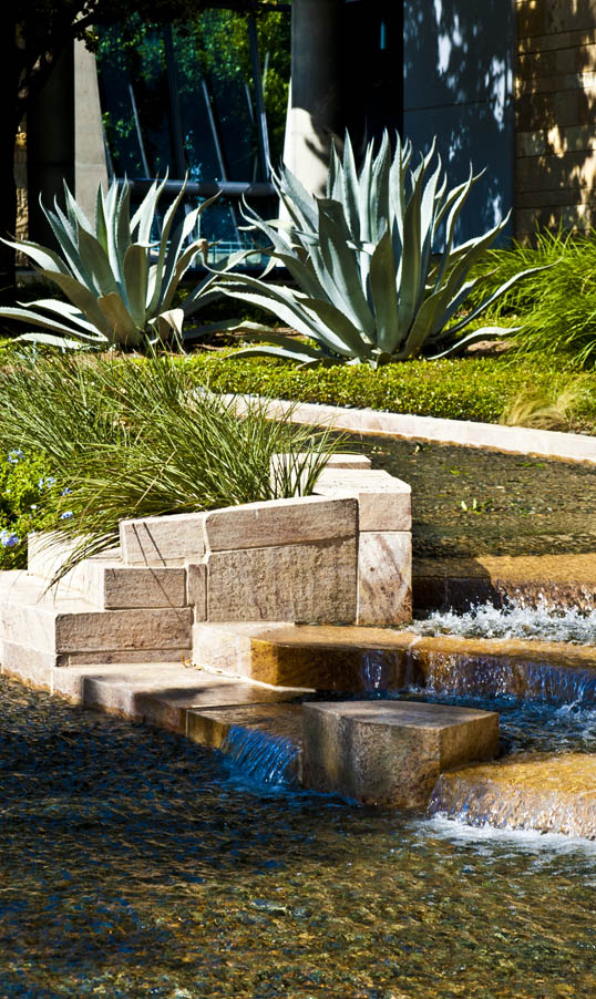 Manmade Stream and Naturemade agave plants Downtown Dallas, Texas