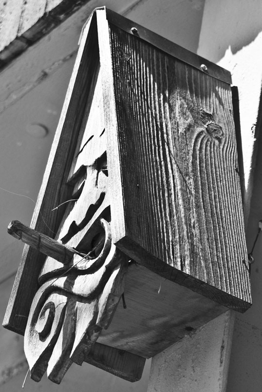 Wry Birdhouse Main Street Deep Ellum Dallas, Texas